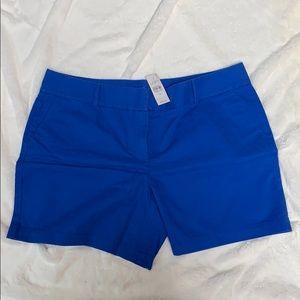 Loft 6 inch cotton shorts- royal blue, Size 14